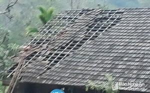 Mưa đá, lốc xoáy lần đầu trút xuống vào tháng Giêng, người dân Nghệ An không kịp trở tay