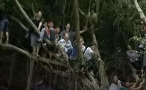 Vỡ sân Bình Phước, fan leo cây xem Xuân Trường, Công Phượng... thi đấu
