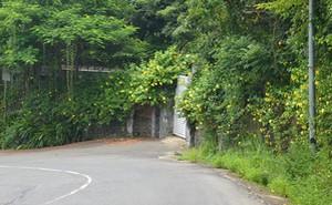 Tình tiết bất ngờ trong phiên toà vụ dọa giết Chủ tịch Đà Nẵng Huỳnh Đức Thơ