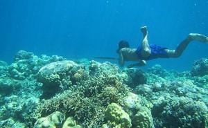 Tộc 'người cá' tiến hóa để lặn sâu tới 70 m