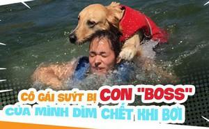 """Dắt cún cưng đi bơi, cô gái trẻ suýt bị chính con """"boss"""" của mình dìm chết"""