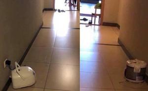 Hình ảnh người dân trong chung cư đem nồi cơm điện ra hành lang cắm gây tranh cãi lớn trên MXH