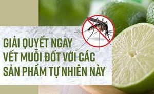 Giải quyết ngay vết muỗi đốt với các sản phẩm tự nhiên này
