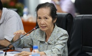 Bà Phạm Chi Lan: Lùi Dự Luật Đặc khu là một trong những quyết định sáng suốt nhất