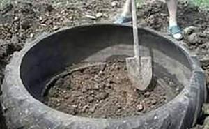 Bọc nilon vào chiếc lốp xe cũ rồi đặt xuống đất, ai cũng bất ngờ trước thành quả thu được