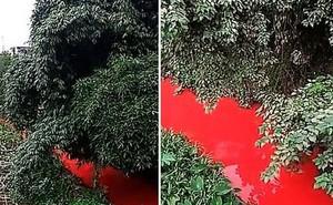 Dòng sông bất ngờ đỏ như máu, người dân tá hỏa khi rõ nguyên nhân