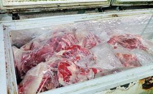 Hải quan lý giải việc đấu giá 170 tấn thịt trâu bị tịch thu