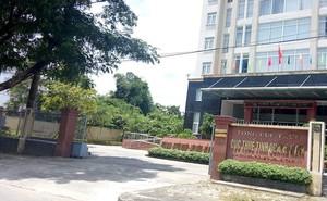 Quảng Nam: Một người có thu nhập 700.000 USD từ Google