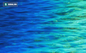 Màu nước đại dương đang biến dạng: Ẩn họa nào đang đe dọa chúng ta?