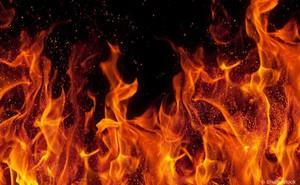 Không phải chất lỏng cũng chẳng phải chất rắn hay khí, lửa tồn tại dưới thể gì?