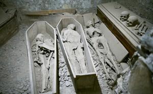 Câu chuyện ly kỳ về xác ướp 800 năm tuổi bị lấy mất đầu