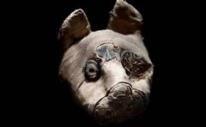 Bí ẩn hàng chục xác ướp chuột trong ngôi mộ cổ ở Ai Cập