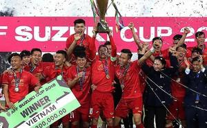 Thể thao Việt Nam: Thu hoạch 2018 và mục tiêu 2019