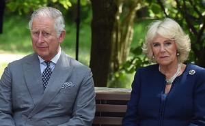 """Trước tin Thái tử Charles ly hôn với """"người đàn bà bị ghét"""" Camilla, phản ứng của người hâm mộ bất thường thế này đây"""