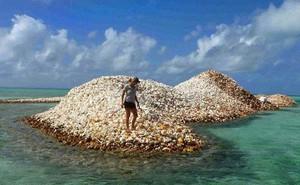Đây là hòn đảo nhân tạo có một không hai trên thế giới: toàn bộ được làm từ vỏ ốc xà cừ chất thành đống