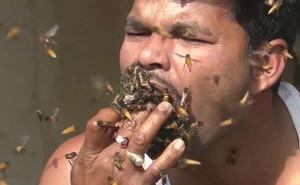 Kinh hoàng cảnh người đàn ông 'nhốt' ong vào miệng khi lấy mật