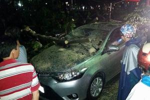 Mưa lớn liên tục, sấm nổ vang trời, cây đổ đè ôtô giữa Sài Gòn