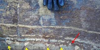 """Phát hiện về """"hóa thạch"""" 3,7 tỷ năm tuổi lại một lần nữa gây bất ngờ vì có vẻ đó chỉ là đá bình thường"""