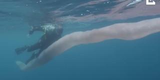 Clip: Sinh vật bí ẩn dài 8m dưới biển sâu khiến thợ lặn choáng váng