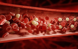 Tập 10 phút/ngày để thông mạch máu toàn cơ thể: Đơn giản để phòng đột quỵ, nhồi máu cơ tim