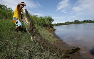 24h qua ảnh: Người đàn ông cho cá sấu khổng lồ ăn trên bờ sông