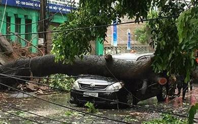 Việt Nam có 7 người chết và mất tích do bão Mirinae