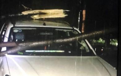 TP.HCM: Mưa lớn, sấm chớp liên hồi, gió quật ngã cả xe ba gác