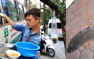 """[Video] Dân Hà Nội """"dắt"""" cá, treo hàng trên cây, bán phở ở ôtô sau chiến dịch giành vỉa hè"""