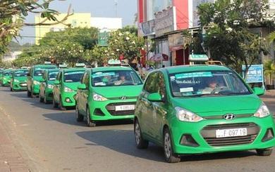 Mai Linh mất thêm người trong cuộc chiến với Uber, Grab
