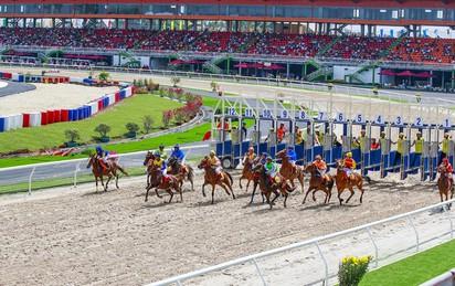 Đại gia Hàn Quốc nào đứng sau dự án trường đua ngựa 420 triệu USD tại Hà Nội?