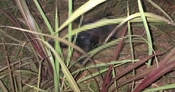 Sau 3 ngày mất tích bí ẩn, thi thể người đàn ông được phát hiện dưới vực sâu