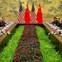 Mỹ - Trung Quốc đang dự thảo thỏa thuận, sắp chấm dứt chiến tranh thương mại?