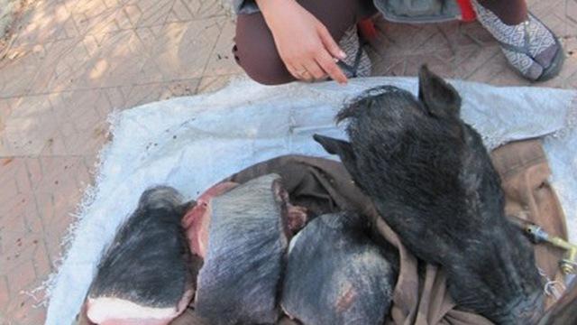 Đà Lạt: Ngang nhiên bán thịt thú rừng trên phố