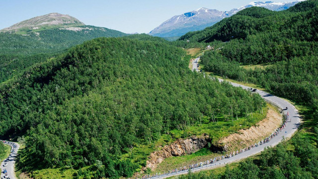 Na Uy chính thức là quốc gia đầu tiên trên thế giới cam kết không chặt phá rừng