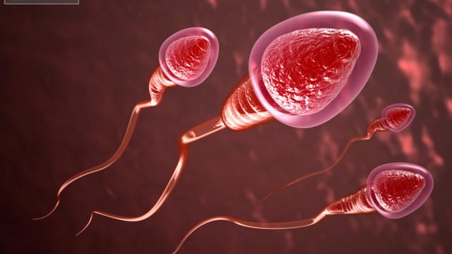 6 lợi ích bất ngờ của tinh trùng
