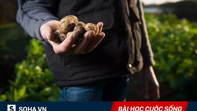 Nhờ những củ khoai tây, thầy giáo đã giúp học sinh nhận ra 1 điều có thể thay đổi cuộc đời