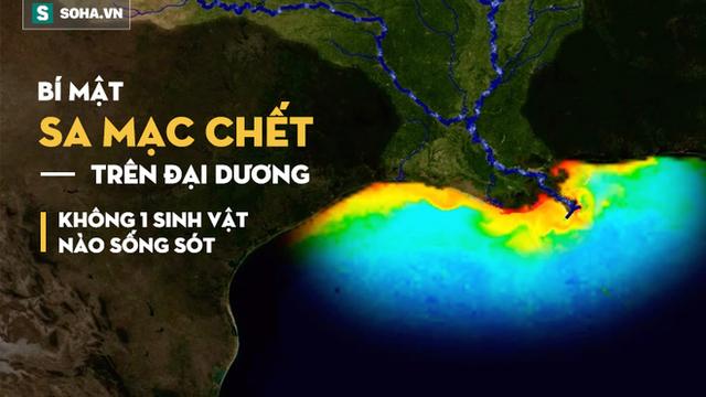 """Giải mã bí ẩn """"vùng chết"""" trên đại dương, nơi không một sinh vật sống sót!"""