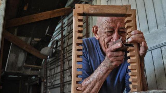 Người thợ mộc và cái cây rắc rối trước nhà: Câu chuyện về cách ứng xử với khó khăn ở đời
