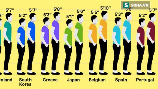 Đố bạn: Quốc gia nào có chiều cao trung bình cao nhất thế giới?
