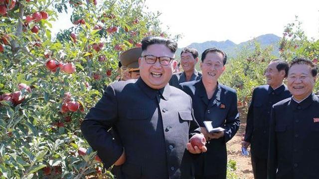 Ông Kim Jong-un thảnh thơi thăm vườn táo sau khi đáp trả lời đe dọa của ông Donald Trump
