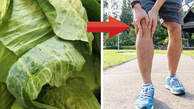 Đắp lá bắp cải lên chân: Cách chữa bệnh gút, đau xương khớp vô cùng hiệu quả