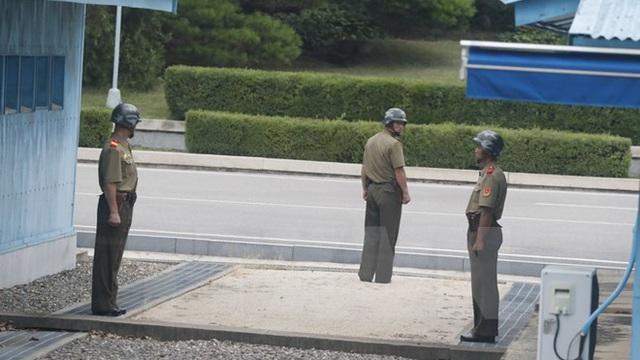 Triều Tiên tiếp tục chỉ trích cuộc tập trận chung Mỹ-Hàn Quốc
