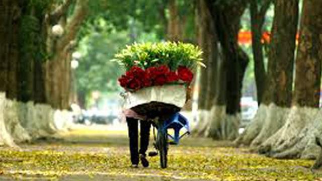 Dự báo thời tiết 20/10: Hà Nội nắng vàng, Sài Gòn lo ngập
