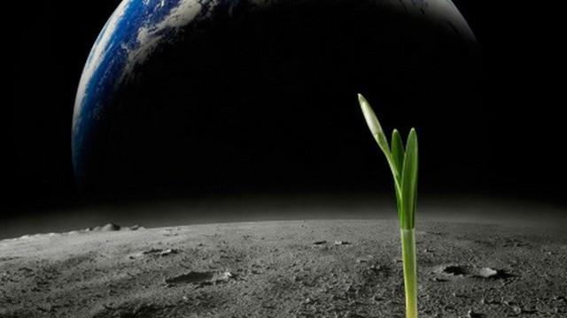 Giới khoa học Mỹ tìm ra cách thức mới xác định sự sống ngoài Trái Đất