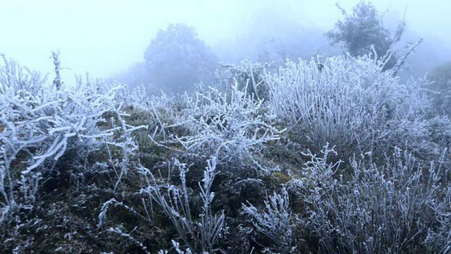 Chuyên gia khí tượng: 'Mùa đông năm nay đến sớm, rét đậm miền Bắc vào cuối tháng 12'