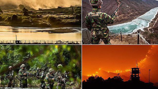 Những khoảnh khắc hiếm có ở DMZ - nơi nguy hiểm nhất hành tinh