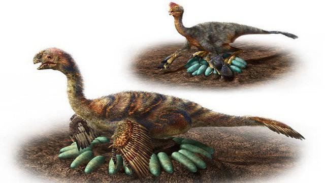 Tiết lộ cách ấp trứng độc đáo của loài khủng long xa xưa