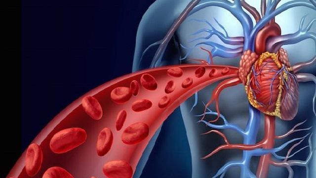 8 loại thực phẩm cải thiện lưu thông máu, bạn nên bổ sung hàng ngày hoặc khi cần