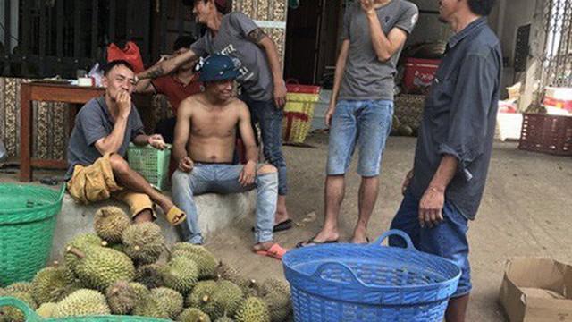 """Lâm Đồng thông tin chính thức về """"cơn sốt"""" hạt sầu riêng"""