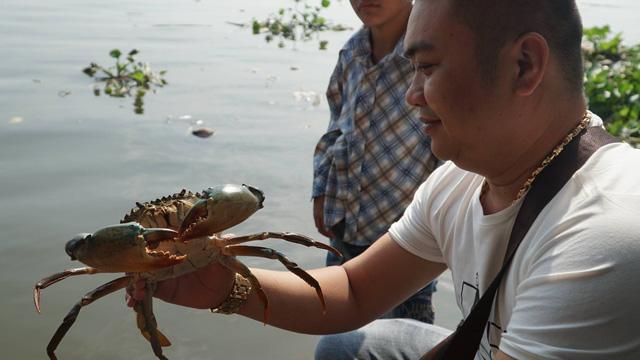 Người Sài Gòn mua cua mang đến chùa phóng sinh ngày ông Công ông Táo